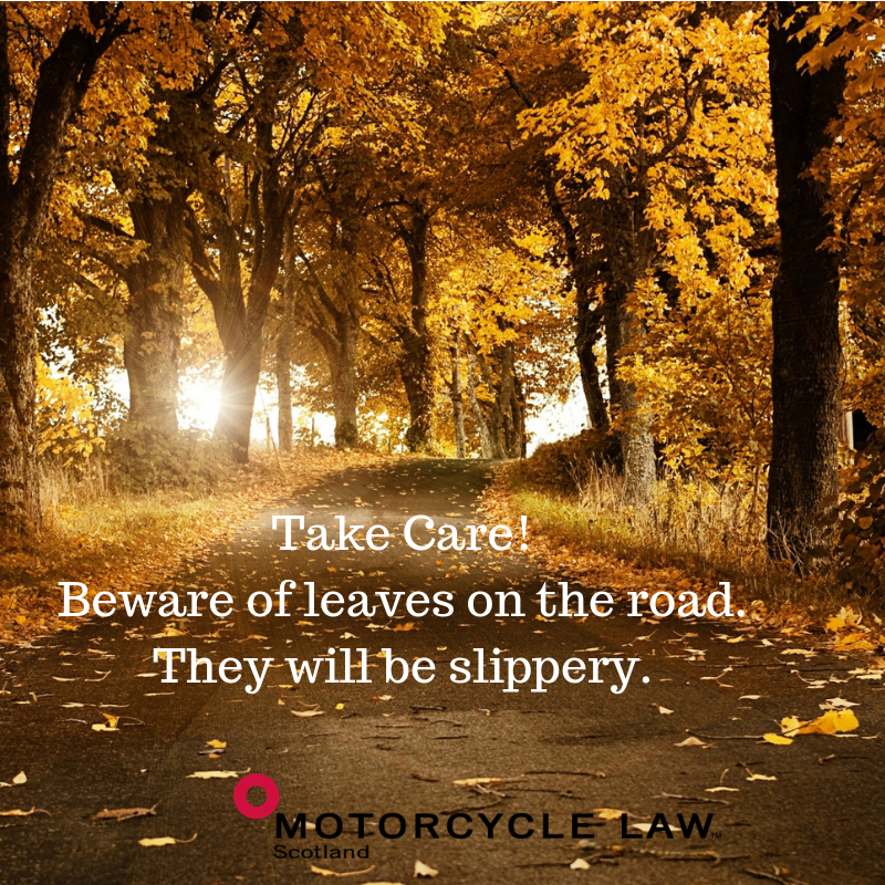 Beware of leaves on the road